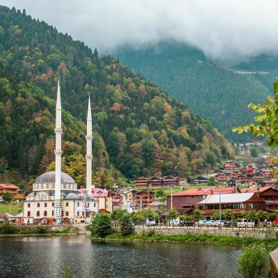 Türkiye'nin Yağmur Ormanları: Uzungöl